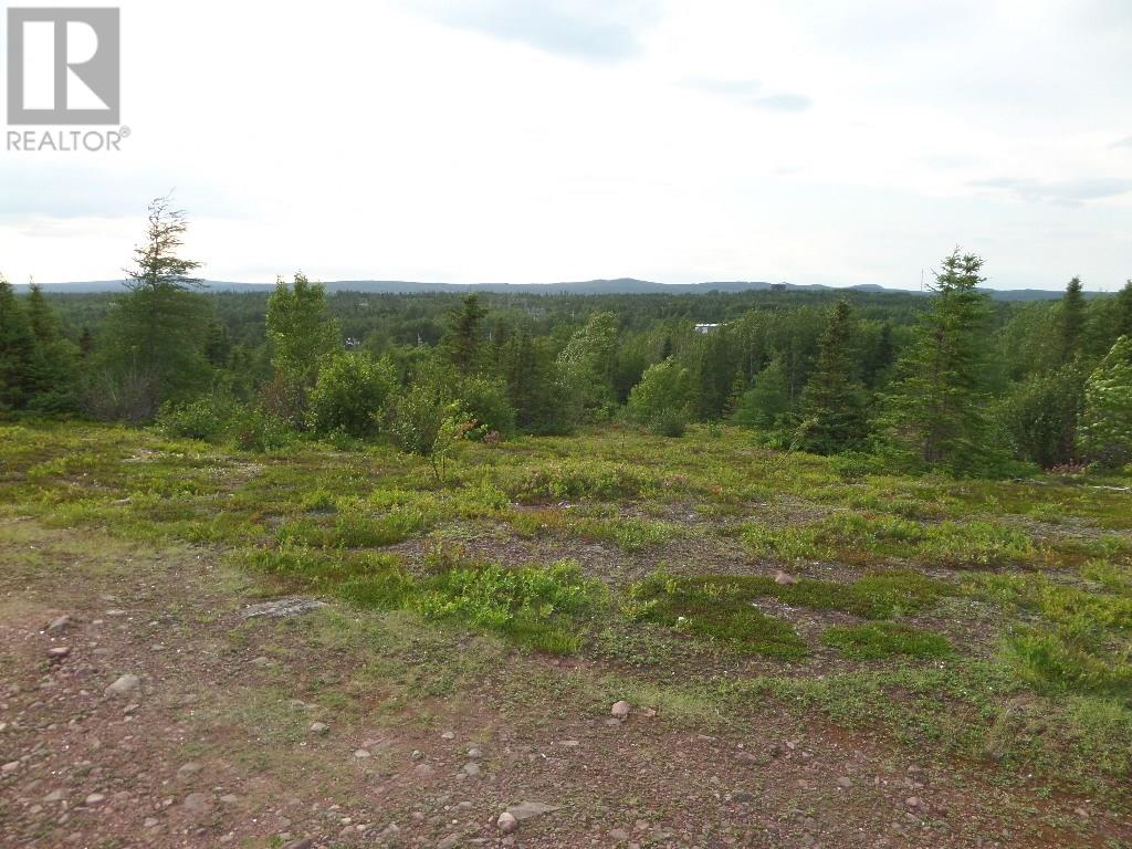 74 Valley Road, Botwood, Newfoundland & Labrador  A0H 1E0 - Photo 18 - 1200066