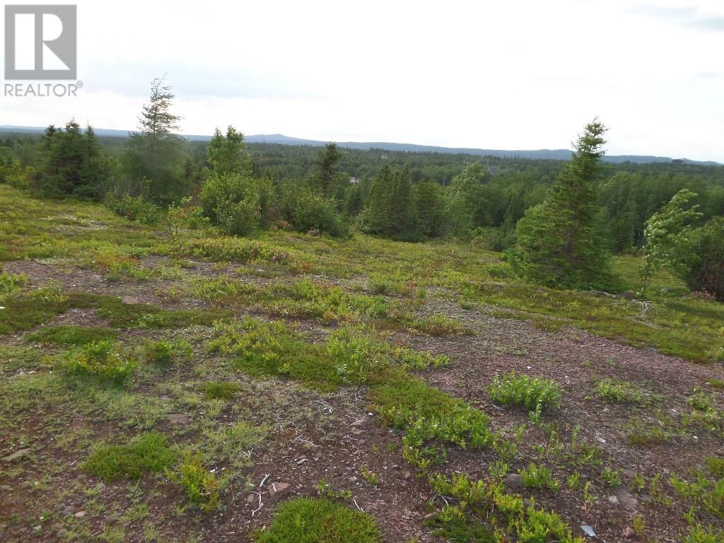 74 Valley Road, Botwood, Newfoundland & Labrador  A0H 1E0 - Photo 20 - 1200066