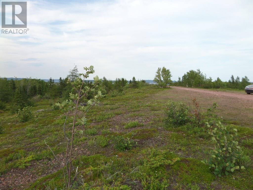 74 Valley Road, Botwood, Newfoundland & Labrador  A0H 1E0 - Photo 25 - 1200066