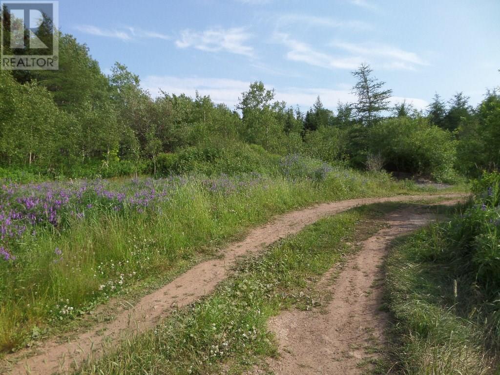 74 Valley Road, Botwood, Newfoundland & Labrador  A0H 1E0 - Photo 5 - 1200066