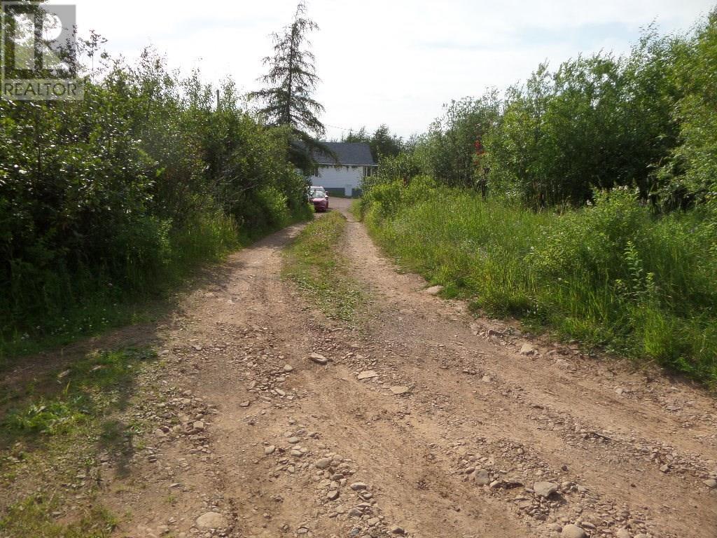74 Valley Road, Botwood, Newfoundland & Labrador  A0H 1E0 - Photo 7 - 1200066