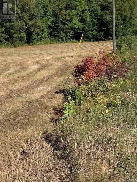 Waterfront Lot Route 105, Northampton, New Brunswick  E7N 1C4 - Photo 7 - NB049049