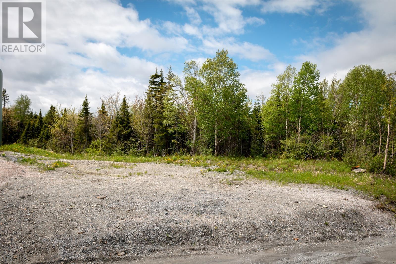 Parcel 045-120 Elizabeth Street, Corner Brook, Newfoundland & Labrador  A2H 6A1 - Photo 1 - 1165834