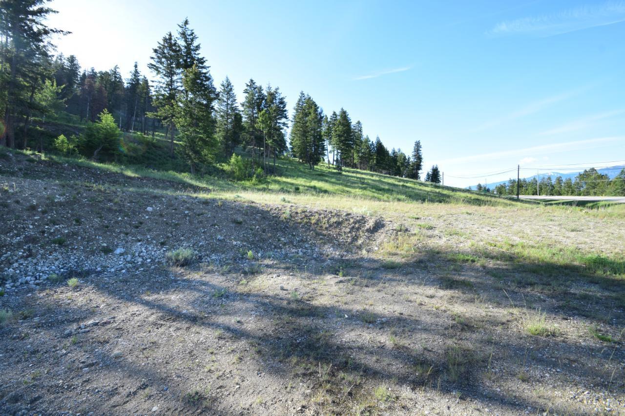7585 Redstreak Park Road, Radium Hot Springs, British Columbia  V0A 1M0 - Photo 14 - 2454295