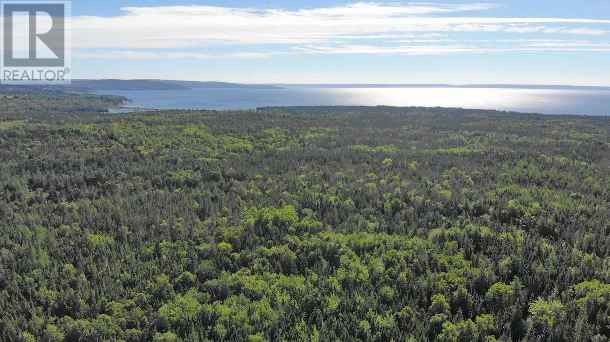 Red Point West Road, B2c 1g4, Mckinnons Harbour, Nova Scotia  B2C 1G4 - Photo 11 - 202018107