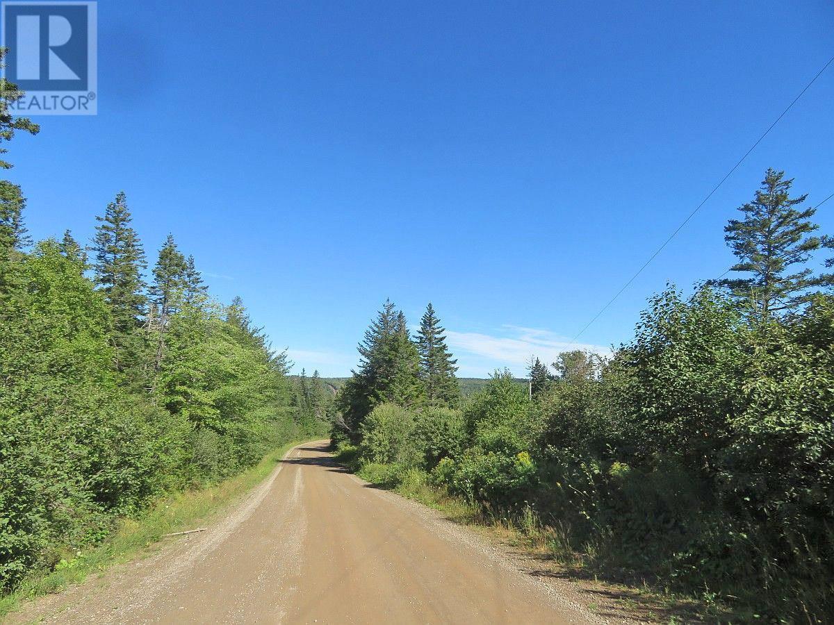 Red Point West Road, B2c 1g4, Mckinnons Harbour, Nova Scotia  B2C 1G4 - Photo 16 - 202018107