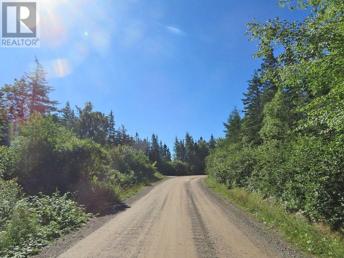 Red Point West Road, B2c 1g4, Mckinnons Harbour, Nova Scotia  B2C 1G4 - Photo 17 - 202018107