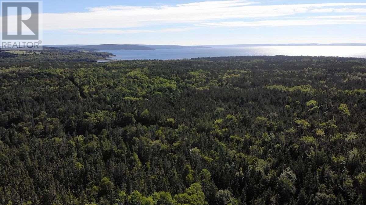 Red Point West Road, B2c 1g4, Mckinnons Harbour, Nova Scotia  B2C 1G4 - Photo 31 - 202018107