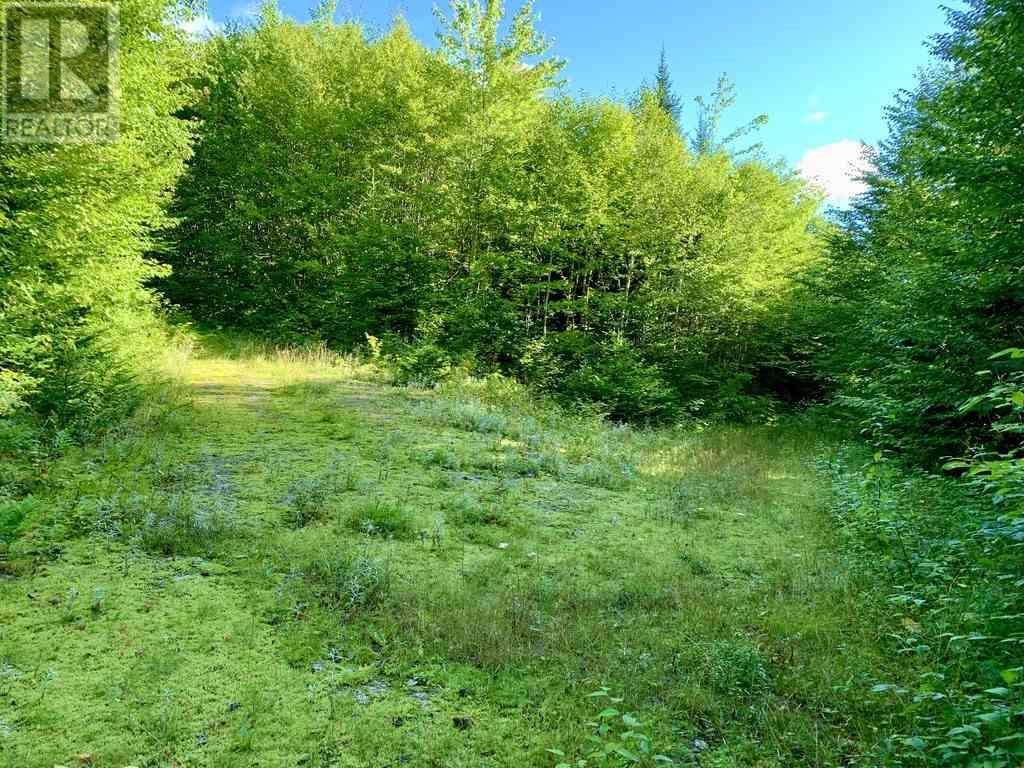 Lot 4 Gairloch Mountain Road, Gairloch Mountain, Nova Scotia  B0E 1B0 - Photo 1 - 202018683