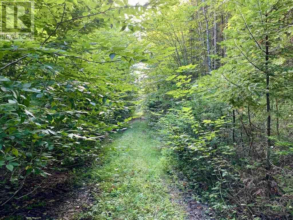 Lot 4 Gairloch Mountain Road, Gairloch Mountain, Nova Scotia  B0E 1B0 - Photo 2 - 202018683