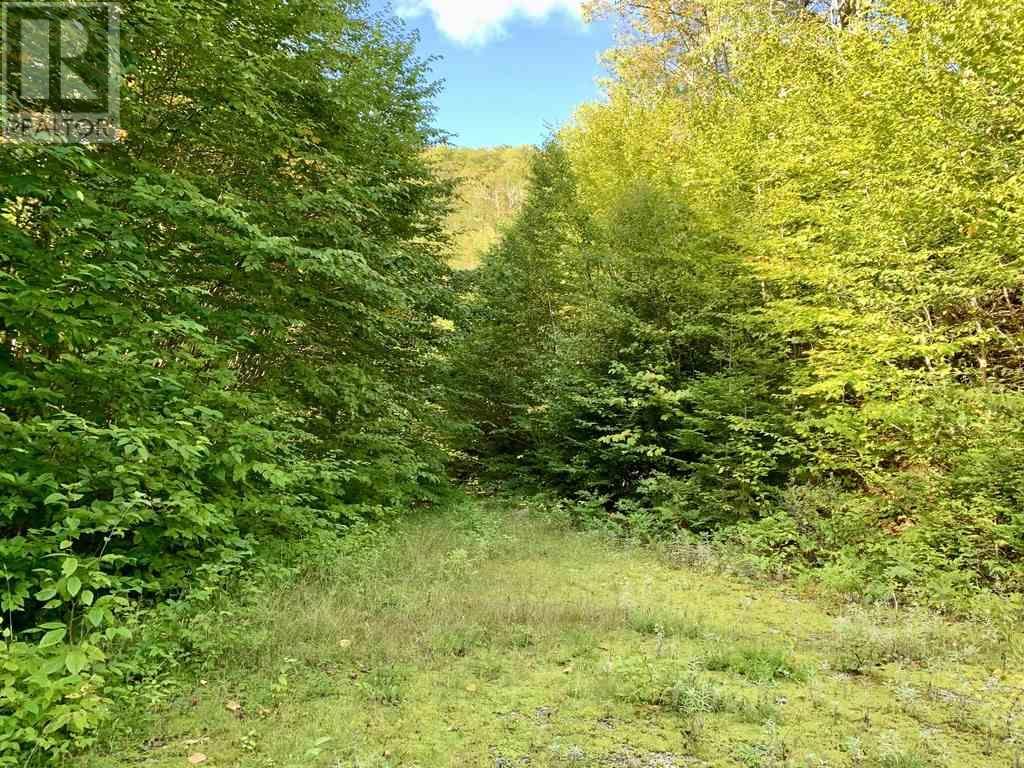 Lot 4 Gairloch Mountain Road, Gairloch Mountain, Nova Scotia  B0E 1B0 - Photo 4 - 202018683