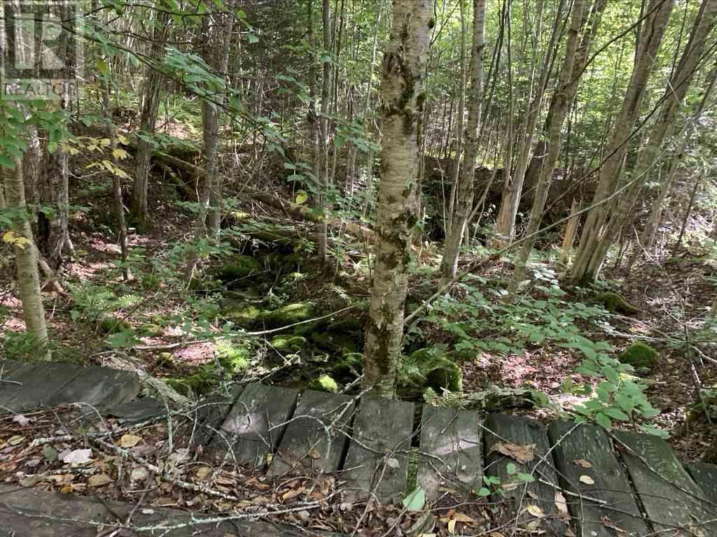 Lot 4 Gairloch Mountain Road, Gairloch Mountain, Nova Scotia  B0E 1B0 - Photo 5 - 202018683