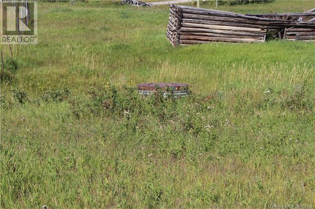 5505 Range Road 2-2, Beaver Mines, Alberta  T0K 1W0 - Photo 48 - LD0178328
