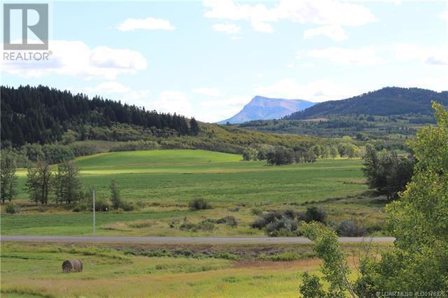 5505 Range Road 2-2, Beaver Mines, Alberta  T0K 1W0 - Photo 45 - LD0178328