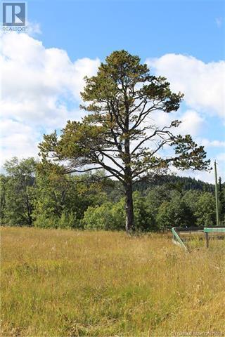 5505 Range Road 2-2, Beaver Mines, Alberta  T0K 1W0 - Photo 46 - LD0178328