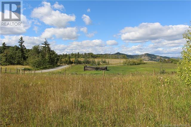 5505 Range Road 2-2, Beaver Mines, Alberta  T0K 1W0 - Photo 47 - LD0178328
