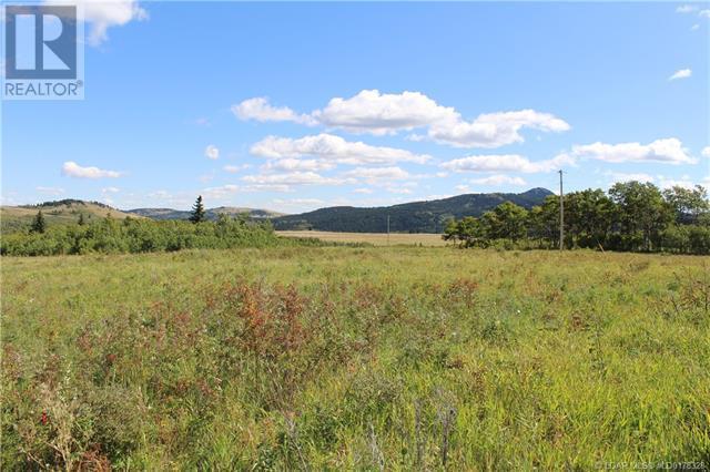 5505 Range Road 2-2, Beaver Mines, Alberta  T0K 1W0 - Photo 44 - LD0178328