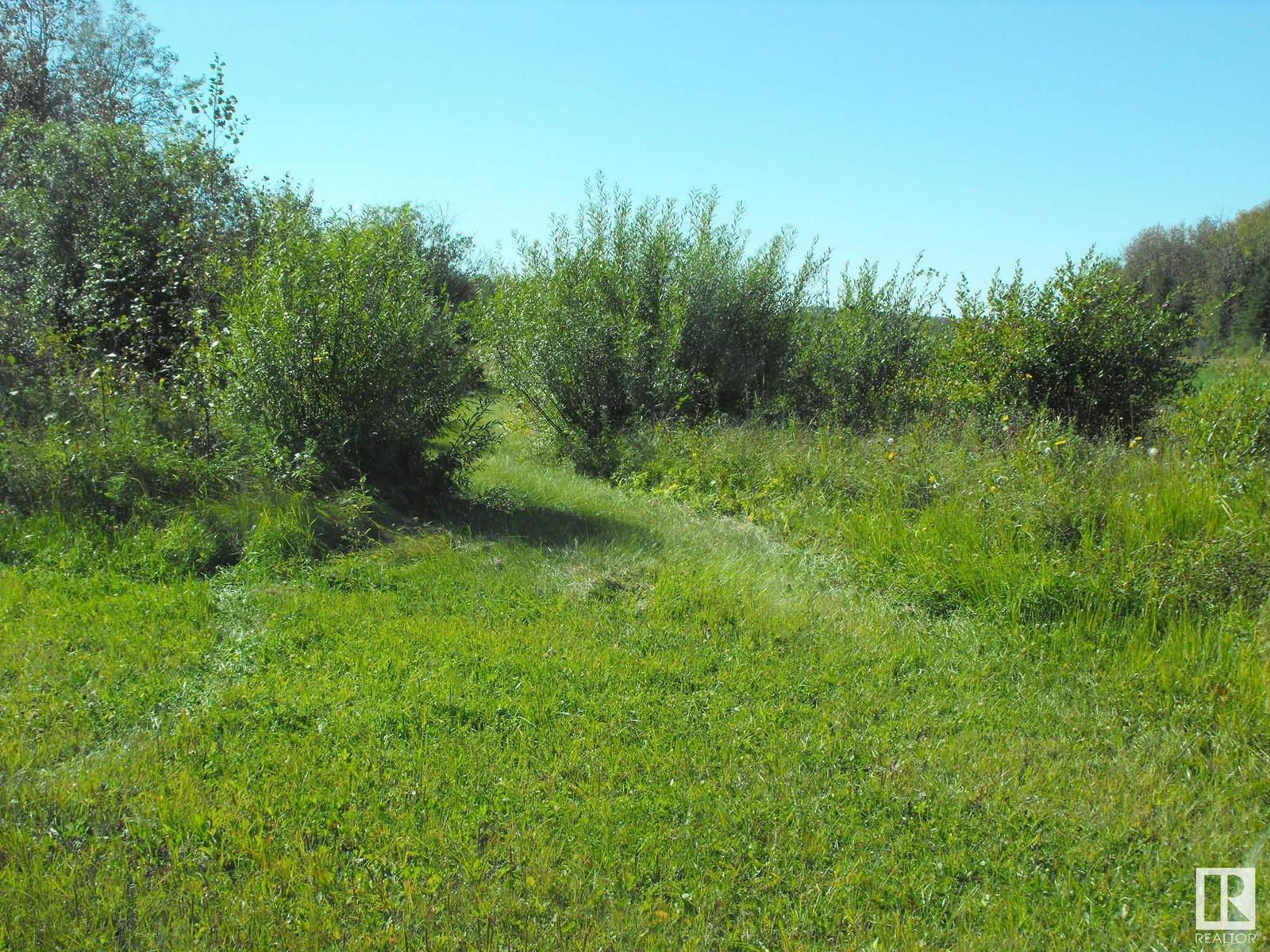 541043 Hwy 881, Rural Two Hills County, Alberta  T0B 3K0 - Photo 21 - E4214894