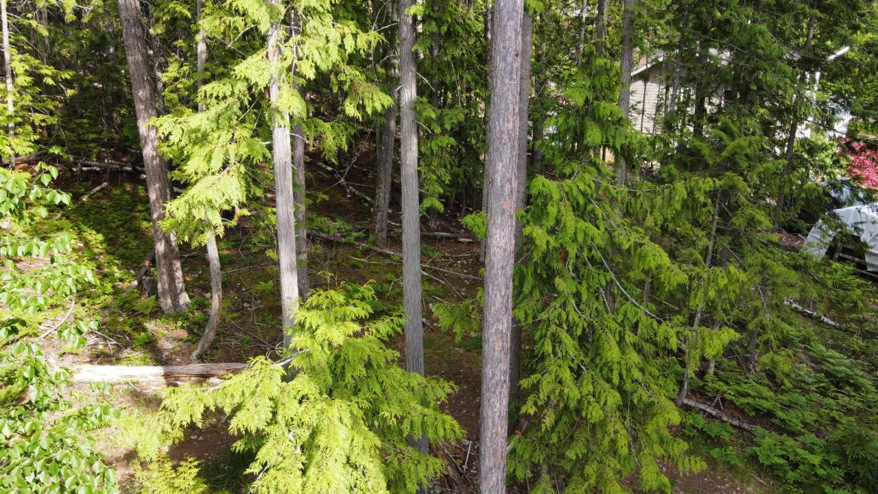 220a Government Hill, Nakusp, British Columbia  V0G 1R0 - Photo 3 - 2454600