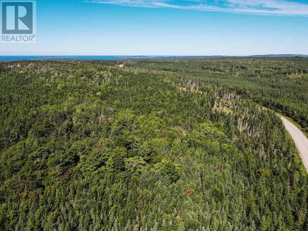 6471 No. 19 Highway, Judique North, Nova Scotia  B0E 1P0 - Photo 11 - 202019533