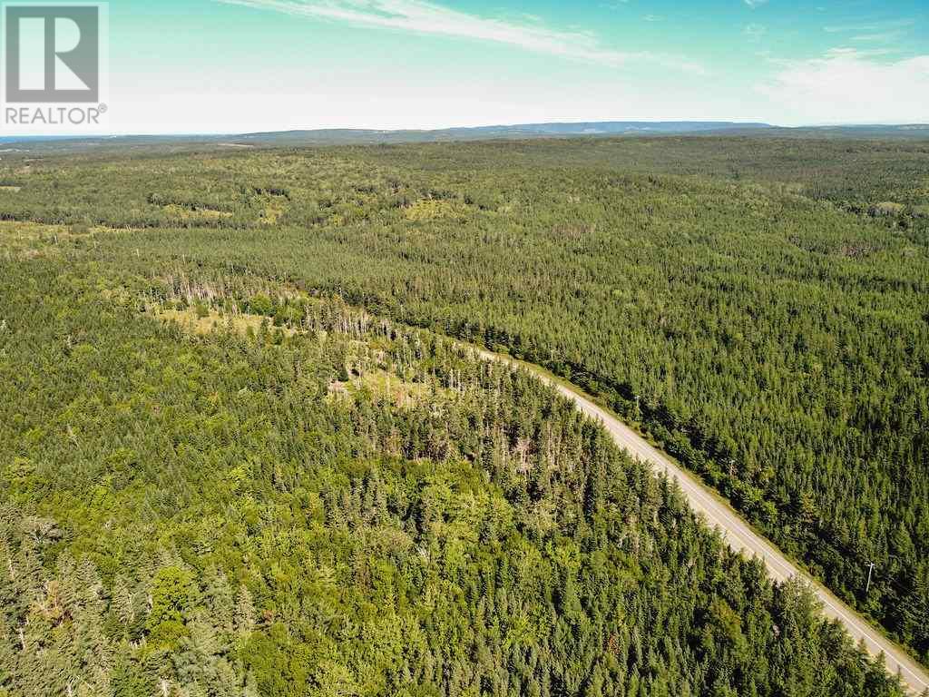 6471 No. 19 Highway, Judique North, Nova Scotia  B0E 1P0 - Photo 14 - 202019533