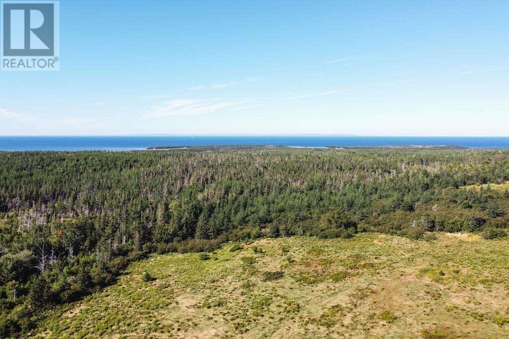 6471 No. 19 Highway, Judique North, Nova Scotia  B0E 1P0 - Photo 2 - 202019533