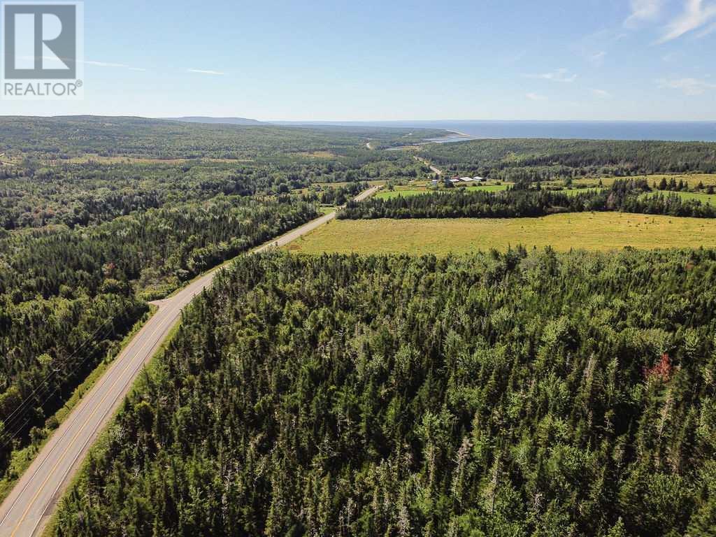 6471 No. 19 Highway, Judique North, Nova Scotia  B0E 1P0 - Photo 9 - 202019533