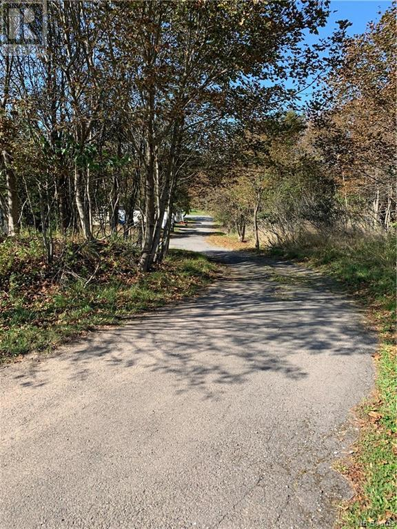 9 Austin Lane, Saint John, New Brunswick  E2M 7Z1 - Photo 3 - NB049809