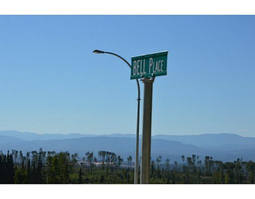 Lot 1 Bell Place, Mackenzie, British Columbia  V0J 2C0 - Photo 1 - N227293