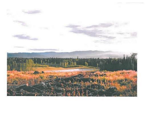 Lot 4 Bell Place, Mackenzie, British Columbia  V0J 2C0 - Photo 6 - N227296