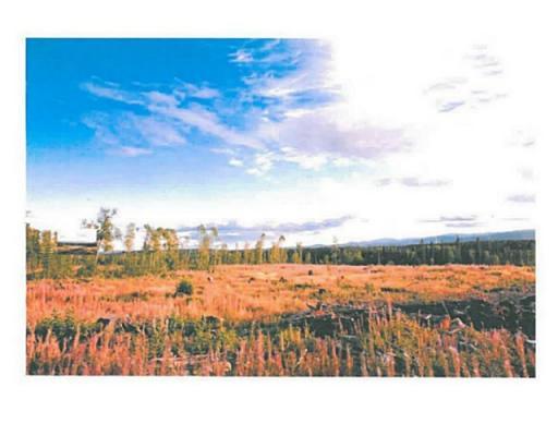 Lot 4 Bell Place, Mackenzie, British Columbia  V0J 2C0 - Photo 7 - N227296