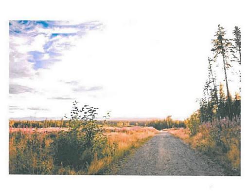 Lot 8 Bell Place, Mackenzie, British Columbia  V0J 2C0 - Photo 4 - N227301