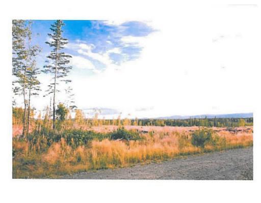 Lot 10 Bell Place, Mackenzie, British Columbia  V0J 2C0 - Photo 5 - N227303