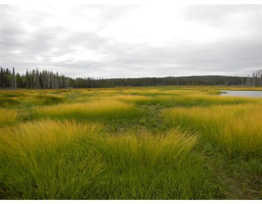 Lower Dean River Road, Williams Lake, British Columbia  V0L 1C0 - Photo 1 - R2367696