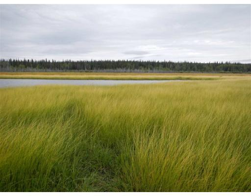 Lower Dean River Road, Williams Lake, British Columbia  V0L 1C0 - Photo 2 - R2367696