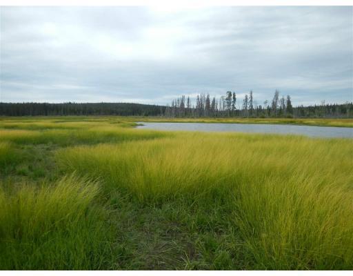 Lower Dean River Road, Williams Lake, British Columbia  V0L 1C0 - Photo 3 - R2367696