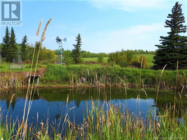 543002 Range Road 104, Morecambe, Alberta  T0B 4K0 - Photo 25 - LD0191571