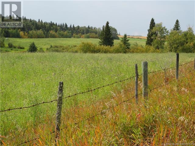 543002 Range Road 104, Morecambe, Alberta  T0B 4K0 - Photo 30 - LD0191571