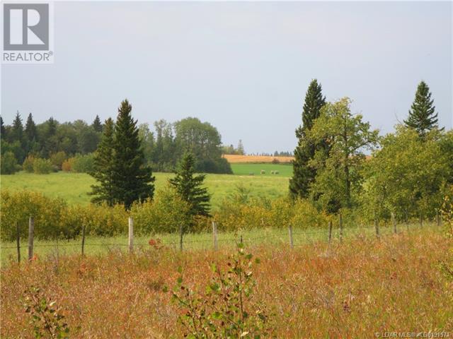 543002 Range Road 104, Morecambe, Alberta  T0B 4K0 - Photo 28 - LD0191571
