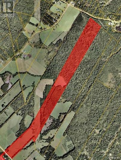 313 Route 616, Keswick Ridge, New Brunswick E6L 1S3 - Photo 1 - NB010848