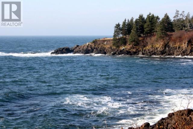Lot 05-09 Route 776, Grand Manan Island, New Brunswick  E5G 4K5 - Photo 7 - SJ175171
