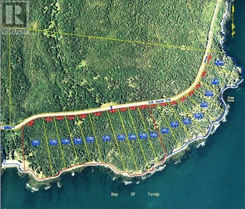 Lot 01-08 Route 776, Grand Manan Island, New Brunswick  E5G 4K5 - Photo 4 - SJ175170