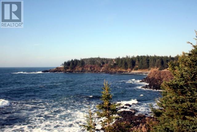 Lot 01-08 Route 776, Grand Manan Island, New Brunswick  E5G 4K5 - Photo 5 - SJ175170
