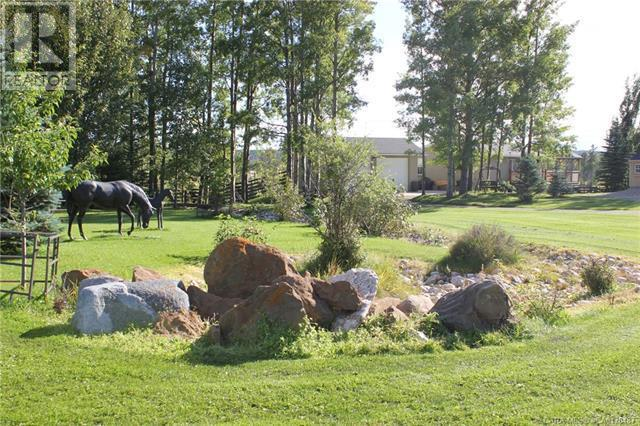 29 Ricinus Ridge Drive, Rural Clearwater County, Alberta  T0M 0M0 - Photo 49 - CA0178487