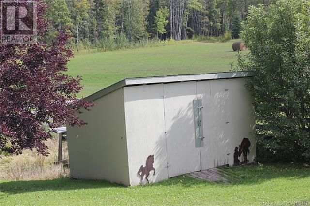 29 Ricinus Ridge Drive, Rural Clearwater County, Alberta  T0M 0M0 - Photo 23 - CA0178487