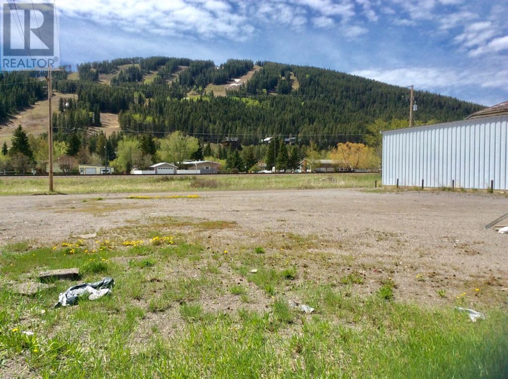 12162 20 Avenue, Rural Crowsnest Pass, Alberta  T0K 0E0 - Photo 3 - LD0184386
