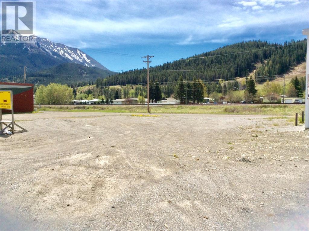 12162 20 Avenue, Rural Crowsnest Pass, Alberta  T0K 0E0 - Photo 4 - LD0184386