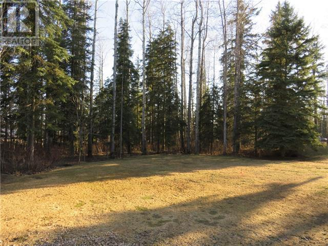 118 Community Lane, Saprae Creek, Alberta  T9H 5B4 - Photo 37 - FM0180492