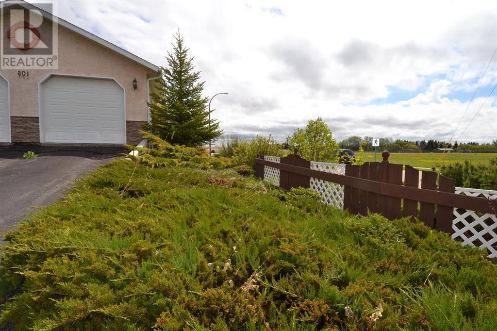 801 10 Avenue Ne, Three Hills, Alberta  T0M 2A0 - Photo 2 - CA0191488