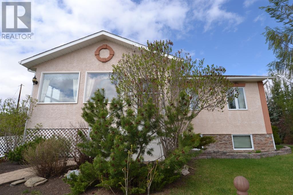 801 10 Avenue Ne, Three Hills, Alberta  T0M 2A0 - Photo 6 - CA0191488